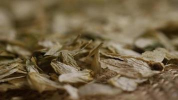 dose rotativa de cevada e outros ingredientes de fabricação de cerveja - fabricação de cerveja 316
