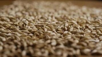 dose rotativa de cevada e outros ingredientes de fabricação de cerveja - fabricação de cerveja 129