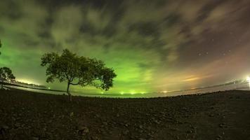 Baum am Chumphon Beach und die Sterne
