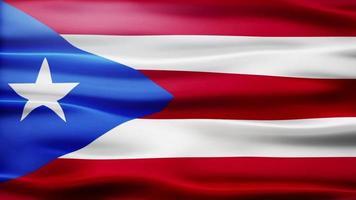 puerto rico vlag lus