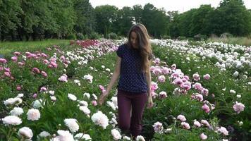 jovem caminhando em um campo de peônias