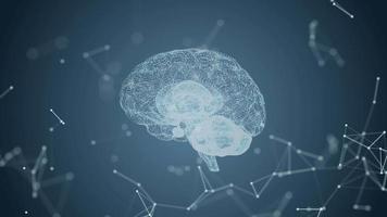 cérebro e plexo abstratos video