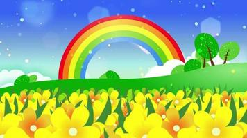 Going through a field of yellow wildflowers with a rainbow in the background