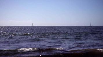 veleiros na água 4k video