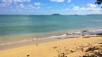 ondas quebram suavemente na praia arenosa do havaí 4k video