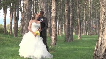 boda en el bosque video