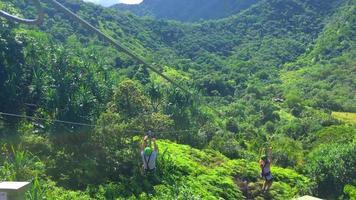 Zipliners Riding Across Hawaiian Valley 4K video