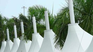 vento soprando em tendas e palmas 4k stock video