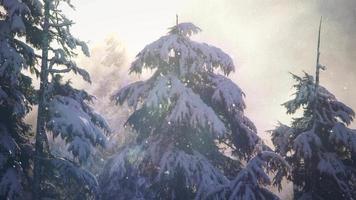 starker Schnee 4k lebender Hintergrund