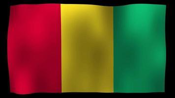 Guinea Flag 4K Motion Loop Stock Video