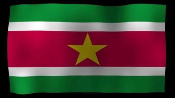Suriname Flag 4K Motion Loop Stock Video