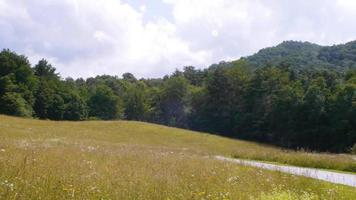 A pastoral hillside scene