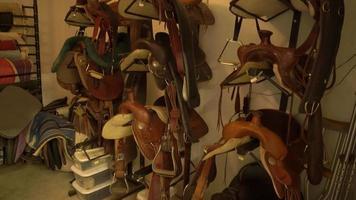 Pan of Horse Saddles 4k