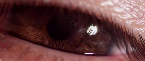 Close up of human eye with brown iris blinking twice in 4K video