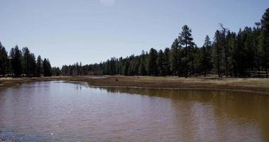 Prise de vue panoramique horizontale allant à gauche d'un petit lac au milieu d'une forêt en 4k.