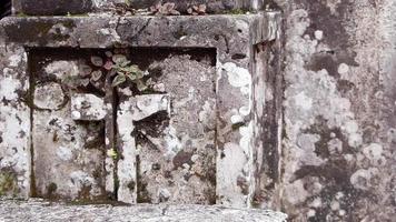 detalhe da capela no cemitério video
