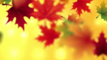 automne feuilles qui tombent avec vidéo d'animation d'espace réservé sur fond jaune