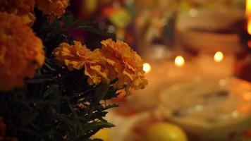 close up de flores de cempasuchil em oferenda tradicional video