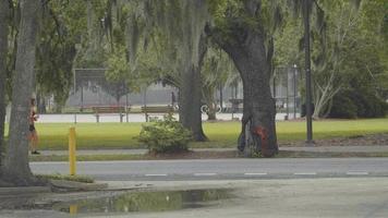 mulher magra correndo na calçada perto de um parque video