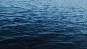 Clip borroso de lago azul oscuro en Maine