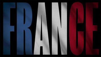 bandera de francia con máscara de francia