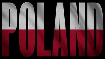 bandera de polonia con máscara de polonia