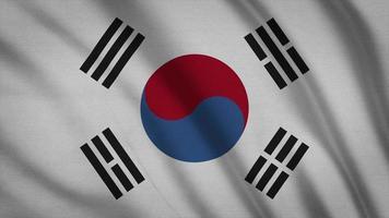 bandera de corea del sur video