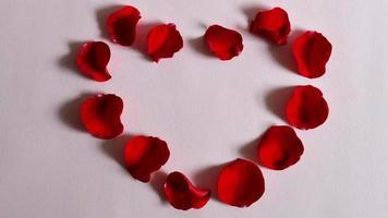 pétalas de coração param o movimento