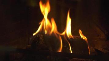 fogo na lareira video
