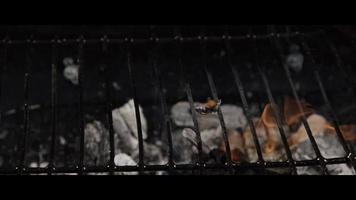 Asado a la parrilla de leña ahumada shot sobre dragón épico rojo - bbq 055