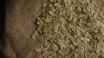Tiro giratorio de cebada y otros ingredientes para la elaboración de cerveza - Elaboración de cerveza 288