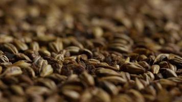 dose rotativa de cevada e outros ingredientes de fabricação de cerveja - fabricação de cerveja 108