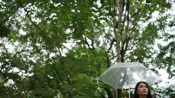 mão de uma mulher sozinha segurando guarda-chuva na chuva video