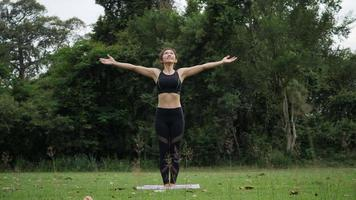 Beautiful woman is doing Yoga in Park video