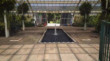 Fountain In The Greenhouse