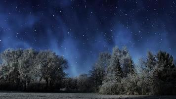 Winter Night Animation Background