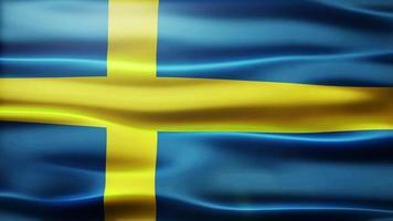 bandiera della Svezia loop video
