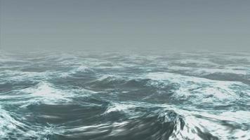 ondas do mar rolam na névoa