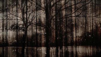 Dark Mystical Wooden Background video