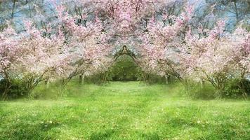 jardim de primavera fantasia