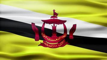 ciclo di bandiera del brunei video