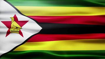 lazo de la bandera de zimbabwe