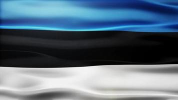 lazo de la bandera de Estonia