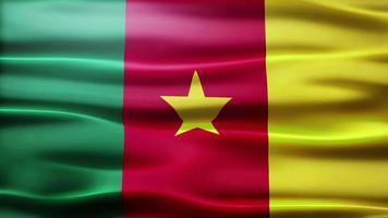 lazo de la bandera de camerún