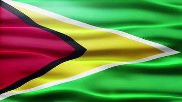 lazo de la bandera de Guyana