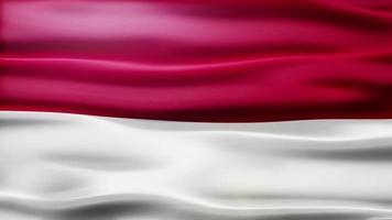 Indonesia Flag Loop