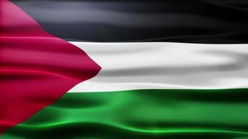 loop di bandiera della Palestina video