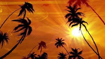 Palm Paradise Animation video