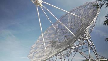 radiotelescopio detrás de un árbol