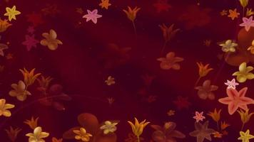 flores abstractas en cámara lenta